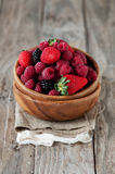 Berry in the bowl Royalty Free Stock Photo