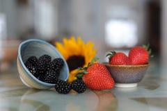 Berry Bowls arkivbilder