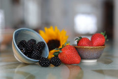 Berry Bowls Stock Images