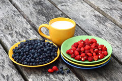 Berry breakfest with milk. Stock Images