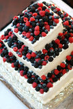 Berry cake Stock Image