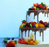 Berry cake. The beautiful berry fruit cake from two tiers covered with chocolate on a wooden table stock photos
