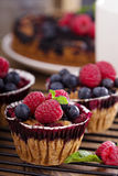 Berry cake with oats Stock Images