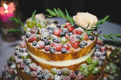 Berry cake with Powedered Sugar Royalty Free Stock Photography