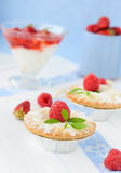 Berry cakes Royalty Free Stock Images