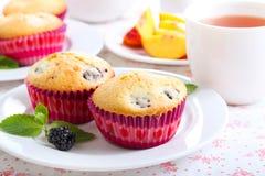 Berry cakes Royalty Free Stock Photos