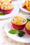 Berry cakes Stock Image
