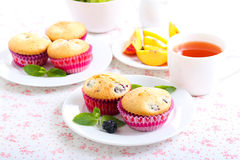 Berry cakes Stock Photography