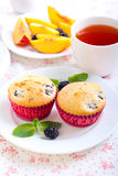Berry cakes Stock Photos
