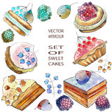 Berry cakes. Watercolor and ink illustration of berry cakes in vector format. All objects are editable royalty free illustration