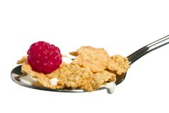 Berry with Cereal Royalty Free Stock Photo