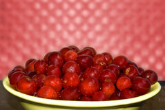 Berry  a cherry is washed-up. A sweet, delicious berry is a cherry, lies on a dish. Character of China Stock Image