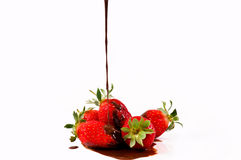 Berry chocolate Royalty Free Stock Photos