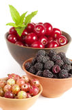 Berry in clay plates Royalty Free Stock Photo