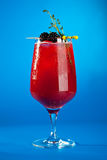 Berry Cocktails for Holiday. On Blue Background. Drink Dressed with Blackberry and Thyme stock images