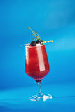 Berry Cocktails for Holiday. On Blue Background. Drink Dressed with Blackberry and Thyme stock image