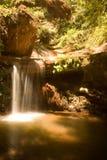 Berry Creek Falls Trail Stock Photos