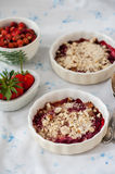 Berry crumble Stock Photos