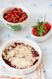 Berry crumble Royalty Free Stock Photography