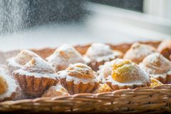 Berry cupcakes in a basket. Cupcakes in a basket are crushed with powdered sugar stock photo