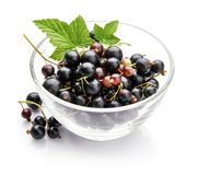 Berry currant in glass dish with green royalty free stock image
