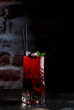 Berry currant lemonade with mint royalty free stock image
