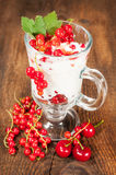 Berry dessert Royalty Free Stock Images