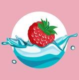 Berry falling in water splash Stock Photo