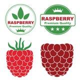 Berry. Food, Banner. (Vector illustration vector illustration