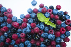 Berry. Fresh summer wild berry fruits like blueberries, raspberries and blackberries Royalty Free Stock Photography