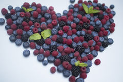 Berry. Fresh summer wild berry fruits like blueberries, raspberries and blackberries Royalty Free Stock Photo