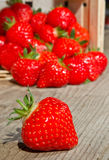 Berry in Front of a Basket Royalty Free Stock Images
