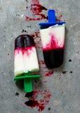 Berry frozen jogurt. Selective focus royalty free stock photos
