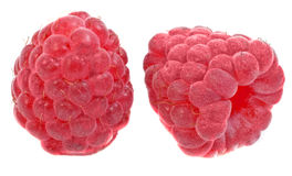 Berry fruit Stock Photography