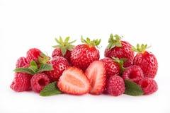 Berry Fruit imagen de archivo
