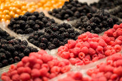 Berry Fruit Stock Images