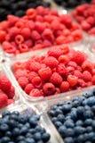 Berry Fruit Stock Image