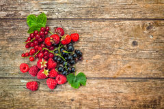 Berry fruit assortment with copy space Royalty Free Stock Photo