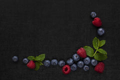 Berry fruit background with copyspace. Royalty Free Stock Images