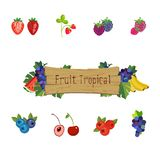 Berry and fruit background with fruity frame composed. Of strawberry, cherry, grape, blueberry, raspberry, blackberry, currant and bilberry fruits with leaves stock illustration