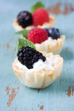 Berry Fruit dessert Stock Photos
