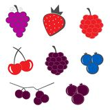 Berry fruit icons set vector. Illustration Royalty Free Stock Photography
