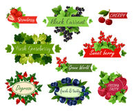 Berry and fruit label set for food, drink design. Berry and fruit label set. Strawberry, raspberry, cherry, blueberry, red and black currant, gooseberry and Stock Photos