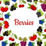 Berry and fruit poster. Fruity frame design. Berry and fruit background with fruity frame composed of strawberry, cherry, grape, blueberry, raspberry, blackberry Stock Photo