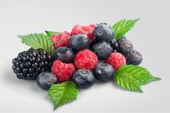 Berry Fruit. Raspberry Blueberry Black  Blue Royalty Free Stock Image