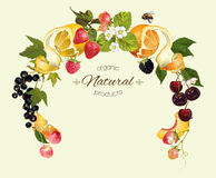 Berry fruit wreath. Vector berry and fruit round wreath frame. Design for tea, ice cream, jam, natural cosmetics, candy and bakery with fruit filling, health Royalty Free Stock Photography