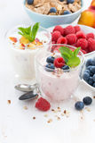 Berry and fruit yoghurt for breakfast Stock Photo