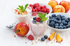 Berry and fruit yoghurt and fresh ingredients Stock Photos