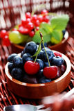 Berry fruits Royalty Free Stock Images