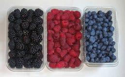 Berry Fruits Photos stock